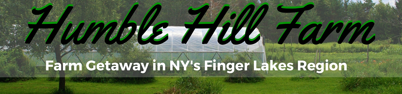 Humble Hill Farm